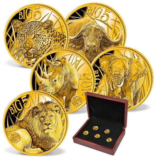 "5er Goldmünzen-Set  ""Big Five"" AT_1683525_1"