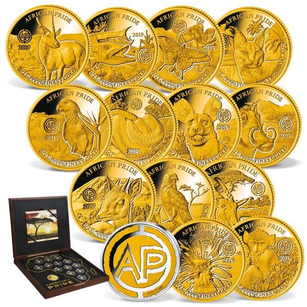 "13er Goldmünzen-Set ""African Pride"" 2019 + Sonderprägung AT_1739160_1"
